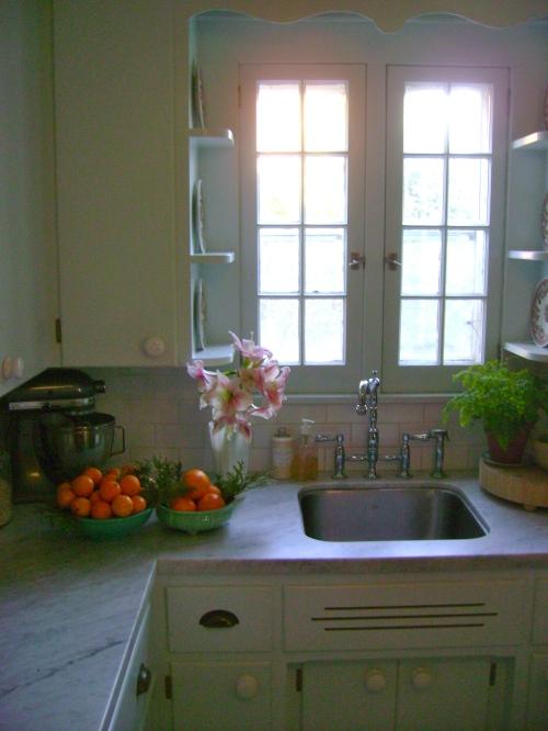 Oranges, cedar and amaryllis in the kitchen